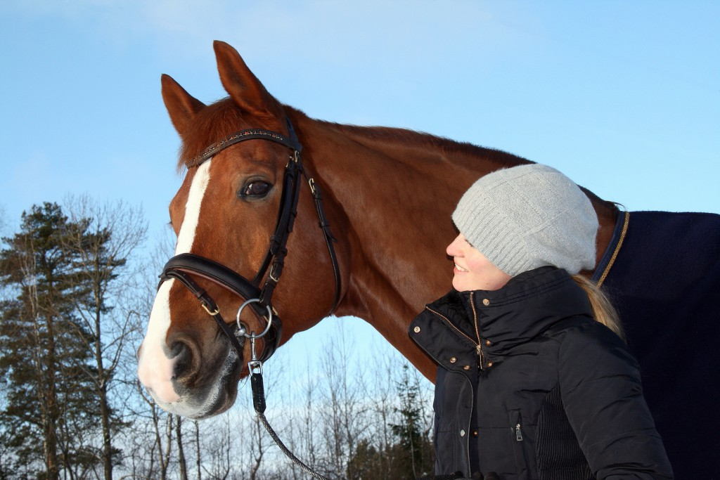 Ebbe häst 1